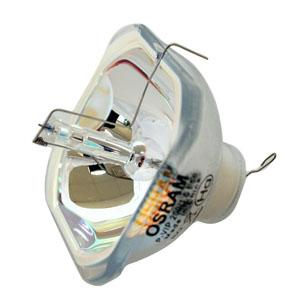 69067-Bulb