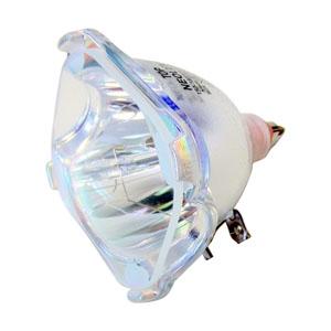 69071-Bulb