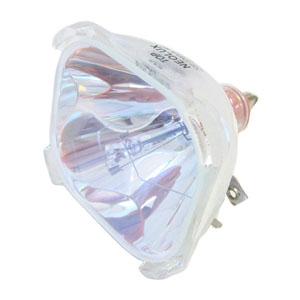 69072-Bulb