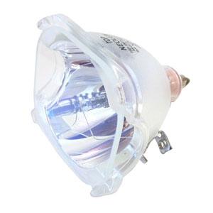 69073-Bulb