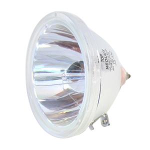 69074-Bulb