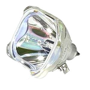 69077-Bulb
