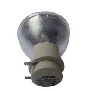 69080-Bulb