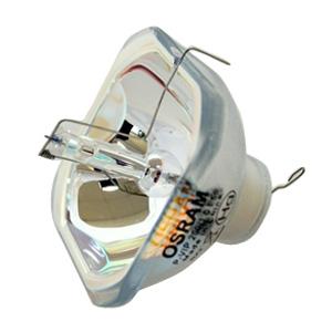 69115-Bulb