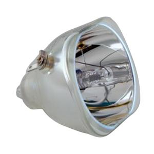 69149-Bulb