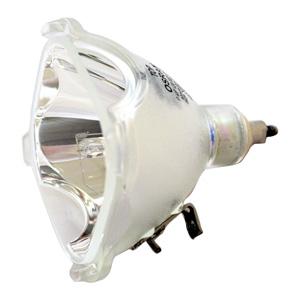 69445-Bulb