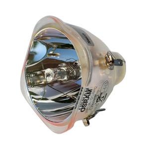 69464-Bulb