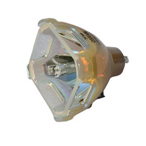 69471-Bulb