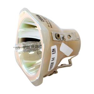 69472-Bulb