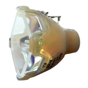 69491-Bulb