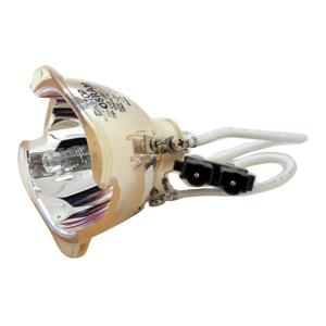 69508-Bulb