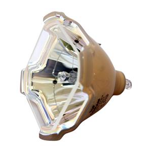 69509-Bulb