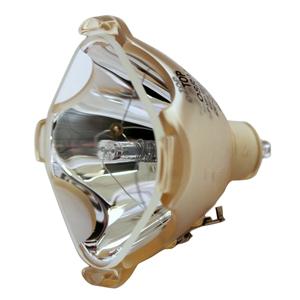 69533-Bulb