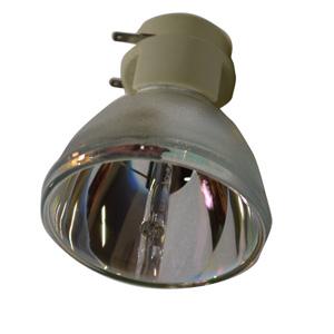 69555-Bulb