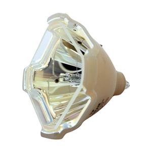 69568-Bulb