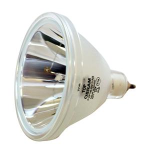 69570-Bulb