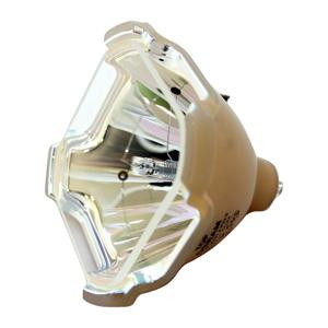 69592-Bulb