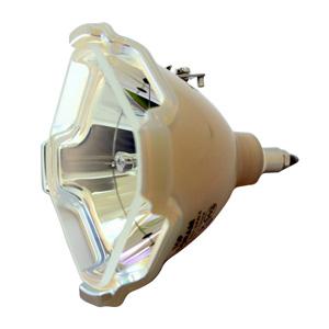 69594-Bulb