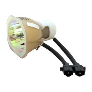 69597-Bulb