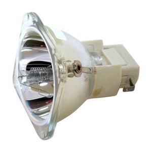 69611-Bulb