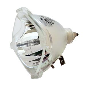 69788-Bulb