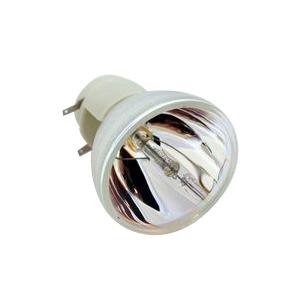 69802-Bulb