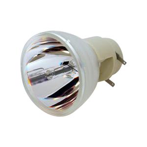 69804-Bulb