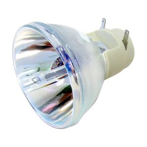 69805-Bulb