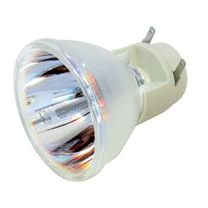 69806-Bulb