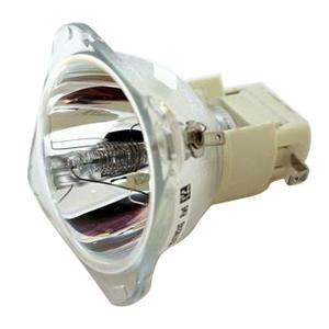 69811-Bulb