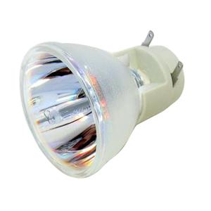 69812-Bulb