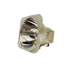69851-Bulb