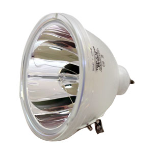 Bulb Only Original Philips Projector Lamp Replacement for Philips 9281 678 05390