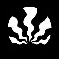 Beam Wave