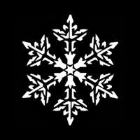 Snowflake Light Lace