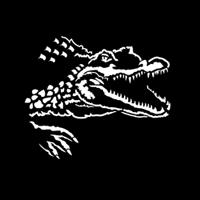 Africa Crocodile