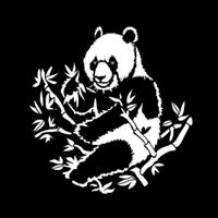 Asian Giant Panda
