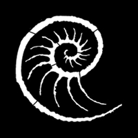Sea Conch
