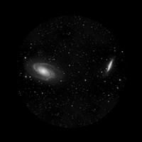 Dual Galaxies