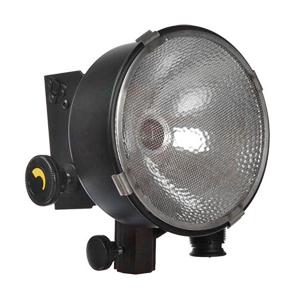 D2-10 - DP Light