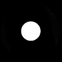 """Pin Spot C (3/4"""")"""