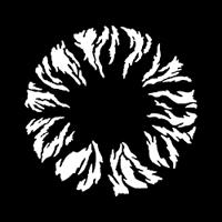 Circular Flame