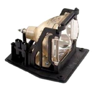 LAMP-031