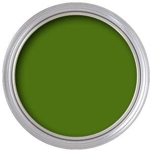 5565 Chrome Oxide Green (Iddings)