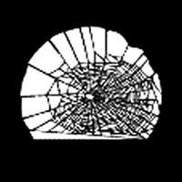 Half Web