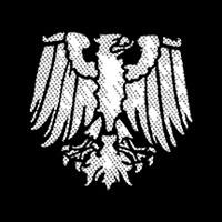 Meshed Eagle