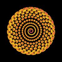 Spiral Bling