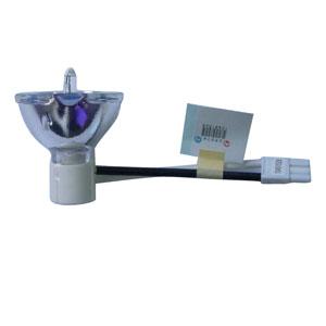 SHP136-Bulb