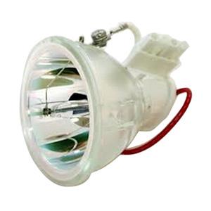 SHP24-Bulb